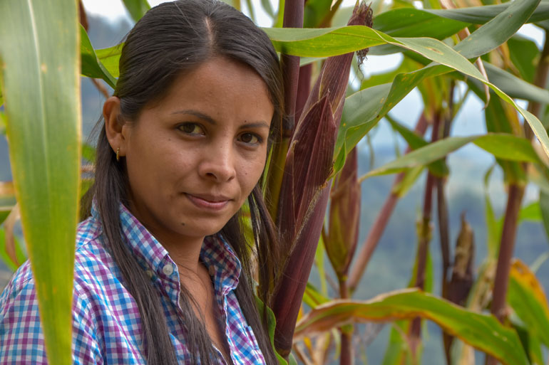 Jeidy is a rural woman farming in the Global South, in Honduras. This image of her is her shoulders and face framed by tall stalks of corn around her. She look directly into the camera and has a determined look on her face.