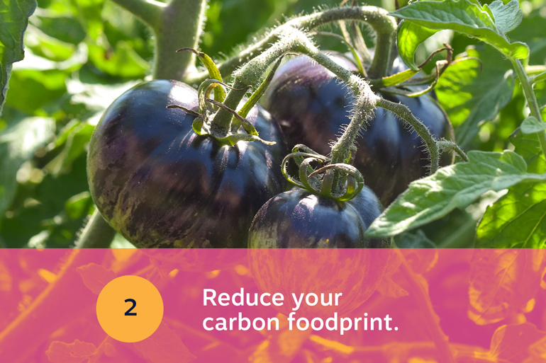 Five food resolutions for 2021, resolution 2: Reduce your carbon foodprint. Image of three purple tomatoes still on the vine.