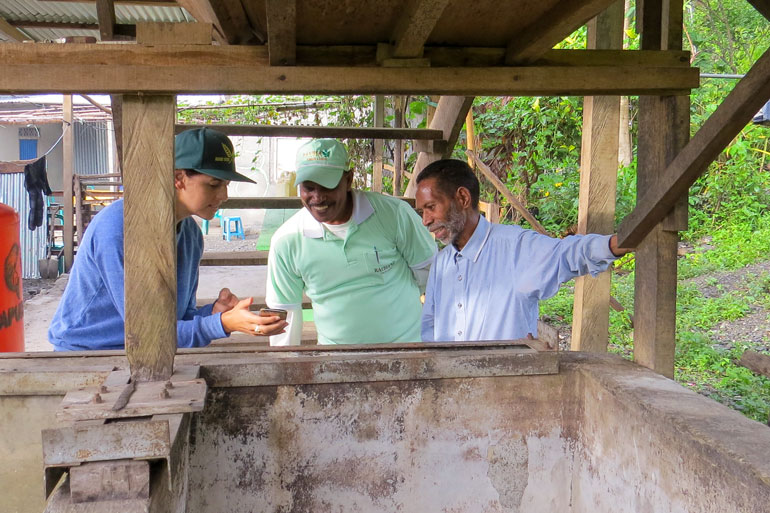 Agroforestry feeds communities in Timor-Leste. A woman in a baseball cap shows her phone to two men who are smiling while looking at the screen. The scene is framed by a concrete bin that has a wooden structure built over it.