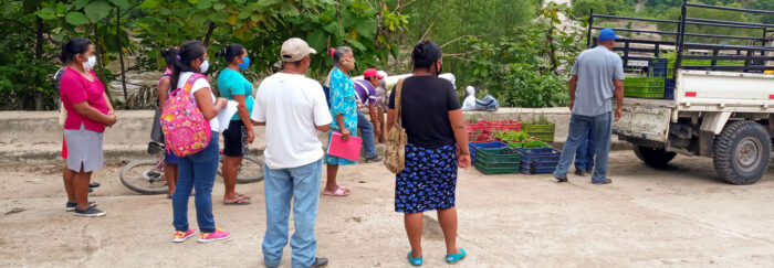 Donors respond to emergency need in Nicaragua: a crowd of about 10 masked people stand at the back of a pick up truck. Plastic bins full of something green are in the back of the truck and on the ground in front of the truck.