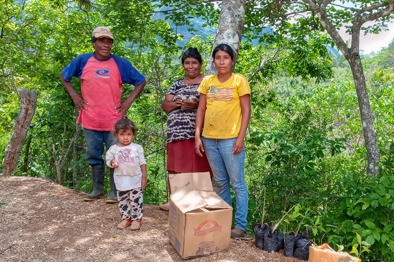 Image of three adults standing at the edge of a road. A child stands with them, next to a cardboard box and a row of seedlings wrapped in plastic.