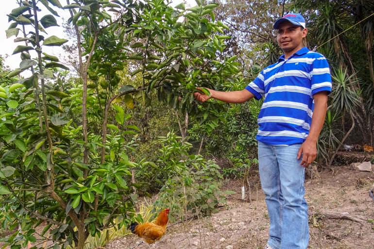 Adonis, pictured here, knows why local seeds are important. Here he stand on a sloped field, smiling toward something to the left of the camera. He holds a leaf attached to a small coffee tree in his right hand. A chicken is standing next to him. There are many different types of  crops surrounding Adonis.