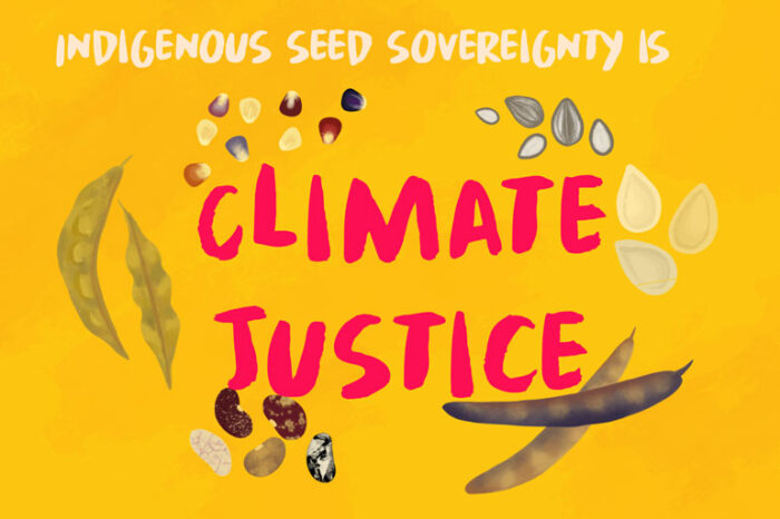 "The words ""Indigenous seed sovereignty is climate justice"" are on a yellow background. Corn seeds, sunflower seeds, squash seeds, five different varieties of bean seeds, and two different types of bean or pea pods dot the area around the words ""climate justice"""