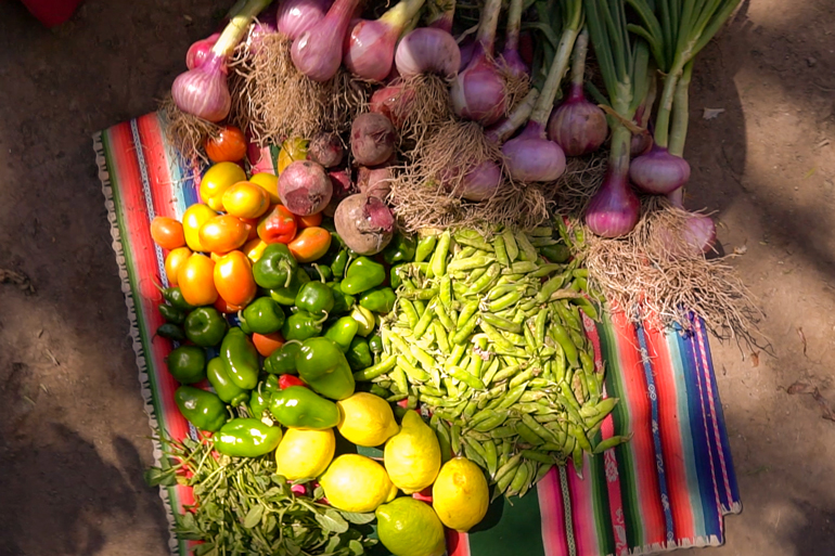 Image of fruits and vegetables laid out in groups on a vibrantly striped blanket on the ground. Onions, citrus fruits and beans are among them.