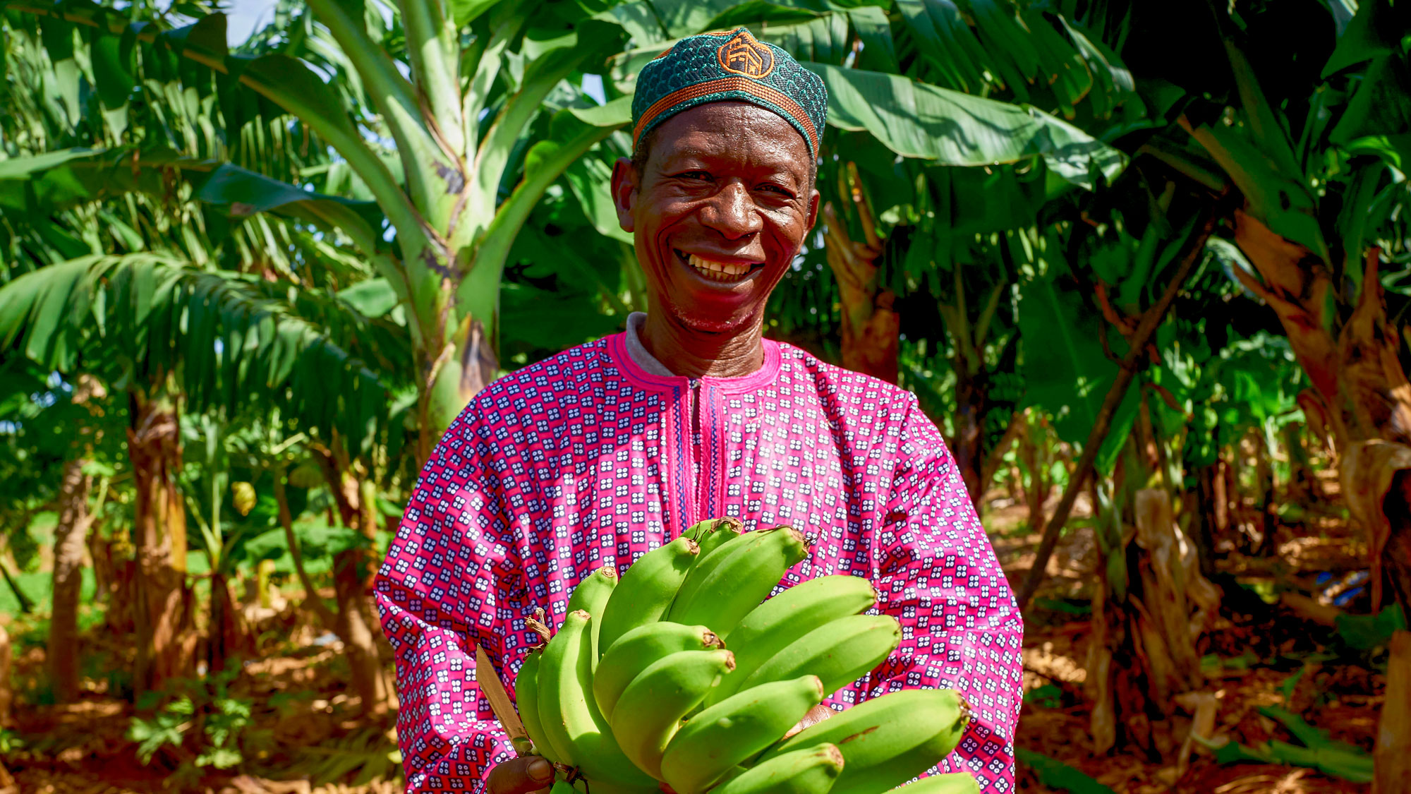 Smiling man holds a large bunch of bananas.