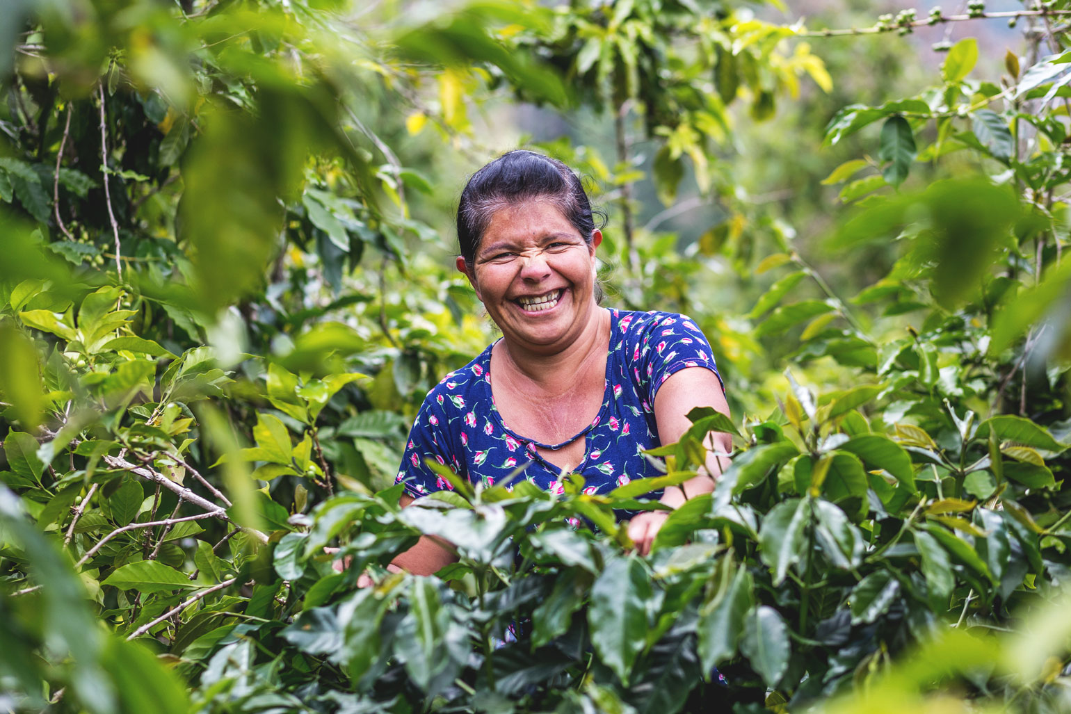a woman crouches next to a cultivated shrub. She's smiling a huge smile.